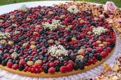 Ciérrese para arriba, tarta cubierta baya grande de las natillas Imagen de archivo libre de regalías
