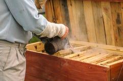Ciérrese por la colmena, cerca de la cual el pastor está trabajando, hombre Foto de archivo libre de regalías