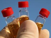 Ciência - 3 tubos de ensaio (1) Fotos de Stock Royalty Free