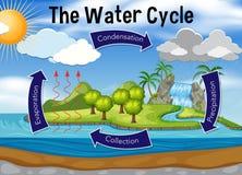 Ciência do ciclo da água ilustração royalty free