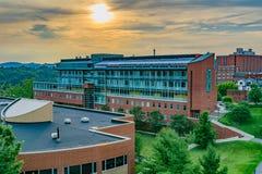 Ciências da vida que constroem em Virginia University ocidental imagens de stock royalty free