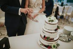 ciąć biel, fruity ślubny tort Obraz Stock