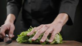 Ciąć mnóstwo zielonej sałaty dla sałatki na drewnianym stole na czarnym tle zbiory