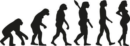 Ciążowy ewolucja wektor royalty ilustracja