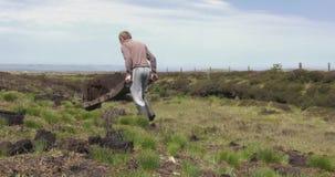 Ciący murawa mszarnika i dostosowywający z rydlem w mech bagnie w Irlandia zdjęcie wideo