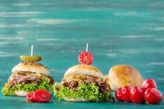 Ciągnący wieprzowina hamburger Zdjęcie Royalty Free