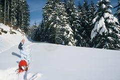 ciągnięcia sania śniegu kobieta Fotografia Stock