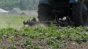 Ciągnik kultywuje pole z niektóre zielonymi roślinami w późnym lecie zbiory