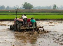 Ciągnik orze ryżowego pole w Chitvan, Nepal Fotografia Stock