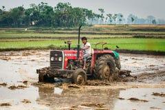 Ciągnik orze ryżowego pole w Chitvan, Nepal Zdjęcie Stock