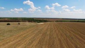Ciągnikowa narządzanie ziemia dla siać szesnaście rzędów antena, pojęcie kultywacja, nasiewanie, orania pole, ciągnik i produkcji zbiory