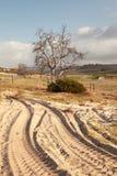 Ciągnikowi obszary na gospodarstwie rolnym blisko Redelinghuys w Południowa Afryka Fotografia Royalty Free