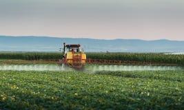 Ciągnikowy opryskiwania warzywa pole przy wiosną zdjęcia royalty free