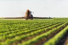 Ciągnikowy opryskiwanie soi pole przy wiosną zdjęcie stock