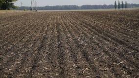 Ciągnikowy oranie w suchym zakurzonym gospodarstwie rolnym zdjęcie wideo