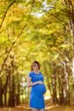 Ciężarna kobieta w jesieni Zdjęcia Stock