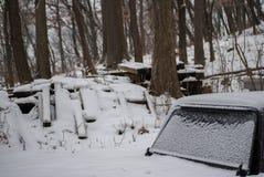 Ciężarowa nakrętka W lesie W zimie fotografia royalty free