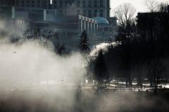 Ciężka kiść przy Niagara spadkami Zdjęcie Royalty Free