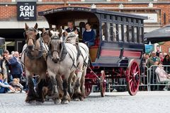 Ciężka koń parada Lennik Zdjęcie Royalty Free