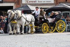 Ciężka koń parada Lennik Zdjęcia Stock