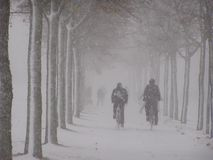 Ciężka zima Zdjęcie Royalty Free