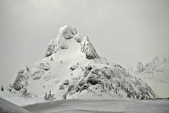 Ciężki śnieg Obrazy Stock