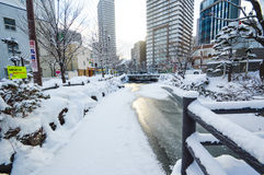 Ciężki śnieg przy centrum miasta Sapporo, hokkaido Japonia fotografii wziąć 25/1/2016 Obrazy Royalty Free