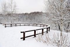 ciężki Moscow parka śnieg Fotografia Royalty Free
