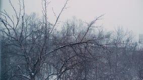 Ciężki opad śniegu w mieście na tle drzewa i cegła domy zdjęcie wideo