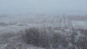 Ciężki opad śniegu w wiośnie zdjęcie wideo
