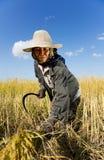 Ciężki pracujący ryżowy rolnik obraz royalty free