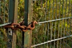Ciężki rdzewiejący łańcuch na żelaznej bramie Obrazy Royalty Free