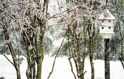 Ciężkiego śniegu nadchodzący puszek na birdhouse w ogródzie fotografia stock