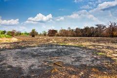 Cięcia i oparzenie rolnictwo obraz stock