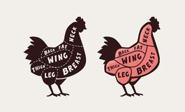 Cięcie mięso, kurczak Plakatowy masarka diagram i plan, wektorowa ilustracja royalty ilustracja
