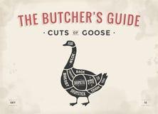 Cięcie mięso set Plakatowy masarka diagram, plan - gąska Fotografia Royalty Free