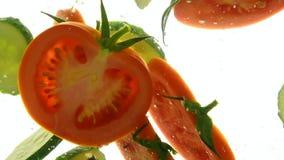 Cięcie plasterki czerwony pomidor i ogórek w wodzie zbiory