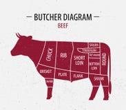 Cięcie wołowina Plakatowy masarka diagram dla sklepów spożywczych, mięso Fotografia Stock