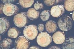 cięcie drewna Obraz Royalty Free