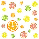 Ci. Collection of citrus slices - orange, lemon, lime and grapefruit, icons set, colorful  on white background, vector illustration Royalty Free Stock Images