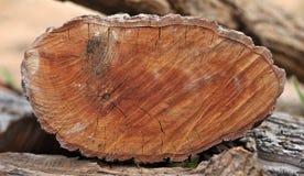 Cię drewno Zdjęcia Stock