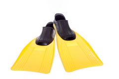 Żółci flippers Obrazy Royalty Free