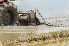 Ciągnik Orze w Rice polu Fotografia Stock