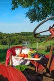 Ciągnik z mlekiem i owoc Fotografia Stock