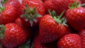 Ci?rrese para arriba de fresas frescas almacen de metraje de vídeo