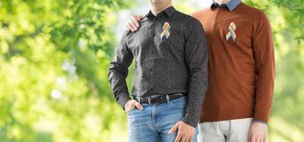 Ci?rrese para arriba de pares con las cintas del arco iris del orgullo gay foto de archivo