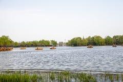 Ci sono molte barche sul lago del parco in primavera immagine stock