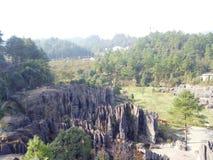 Ci sono tutti i tipi di pietre sconosciute nella foresta di pietra fotografie stock libere da diritti