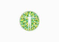 Ciał zdrowie logo, naturalny fizyczny wellness i ludzie terapii pojęcia projekta, Obraz Royalty Free
