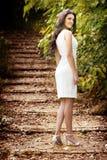 ciała brunetki sukni elegancka seksowna kobieta fotografia stock